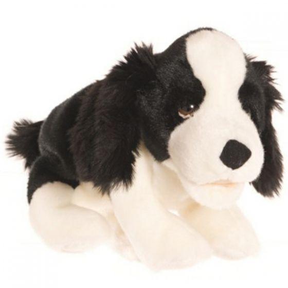 Kleiner Schwarz Weißer Hund 33 Cm Creativer