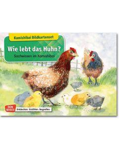 Wie lebt das Huhn? (Bildkarten für unser Erzähltheater)