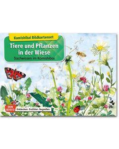 Tiere und Pflanzen in der Wiese (Bildkarten für unser Erzähltheater)