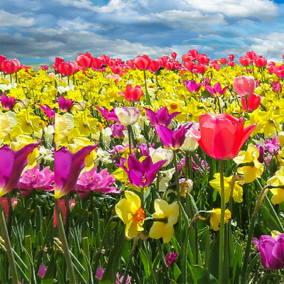 Frühjahr & Ostern